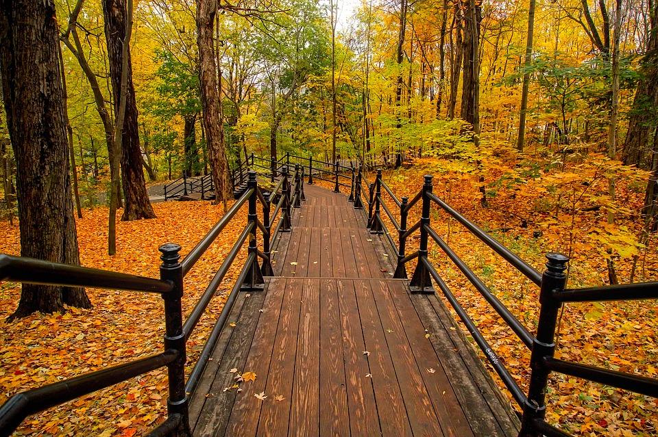 Triester Herbst in Kanada